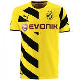 Dortmund Trikot     Artikelnr. 02