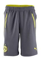 Dortmund Short von Puma