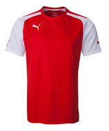 Puma Trainings Trikot Speed Jersey
