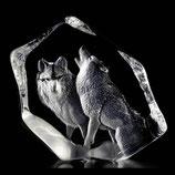 Tierrelief Wildlife, Wolfspaar klein