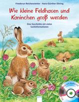 Kleine Feldhasen und Kaninchen  groß werden