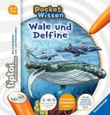 Wale und Delfine - Pocket Wissen