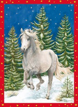 Calendario de Adviento  - Adventskalender Weihnachtspferd