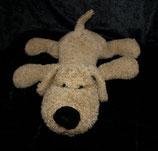 Hund liegend  hellbraun / milchkaffeefarben