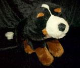 Anna club plush Berner Sennenhund / Hund