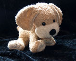 Sterntaler Schmusetier Hund  Frottee Halstuch