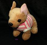 KIK Hund Chihuahua / Chiwawa mit Pullover