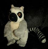 DIEGO Plüsch Katta / Lemur