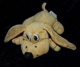 alter Hund aus Nicki liegend  braun