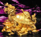 Drachenschildkröte 12 cm x 9 cm - Messing