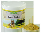 Perna Senior