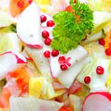Saisonaler Rohkostslat (vegan)