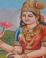 Triphala mit Shanka Bhasma