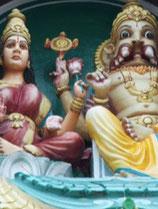 Triphala mit Sarpagandha