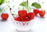 【送料無料】温室ハウス栽培 佐藤錦と旬のさくらんぼ詰め合わせ500g1箱
