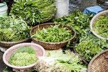 Was Oma noch wusste: Kräuterwanderung mit anschließendem Salat-Kräuter-Genuss