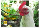 Tag der Hühner