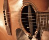 SCHERTLER MAGNETICO AG6 Magnetischer Tonabnehmer für Gitarre