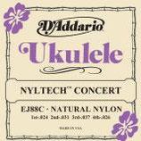 D'ADDARIO Ukulele Concert