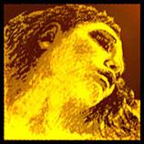 PIRASTRO EVAH PIRAZZI GOLD Violine