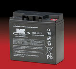 AGM Batterie ES20-12C FT