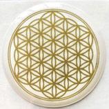 3D- Sticker