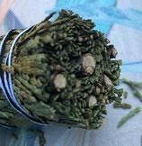 Zedernspitzen  Smudge
