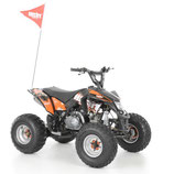 Hecht 54125 Orange Benzin Quad