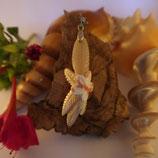 Fleur et feuilles de frangipanier