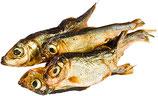 Knabber Fische für Katzen