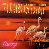 Turbostaat - Flamingo (LP)