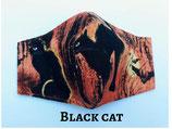 Black Cat Pocket Mask