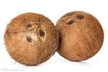 Alte Kokosnuss st