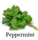 e-cig company Peppermint(ペパーミント)   30ml