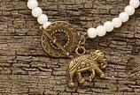 03 Indian Elephant