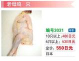 老母鶏 | 冷凍地鶏
