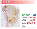 白条鶏 | 冷凍若鶏