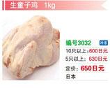 生童子鶏 | 冷凍グリラ
