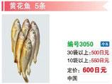黄花魚 | 冷凍黄花魚