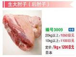 生大肘子(後肘子) | 冷凍豚腿 (後ろ足)