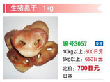 生猪鼻子 | 冷凍豚鼻