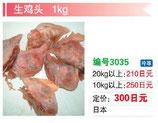 生鶏頭 | 冷凍鶏頭