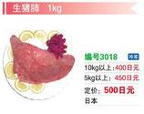 生猪肺 | 冷凍豚肺
