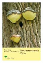 Holzzersetzende Pilze