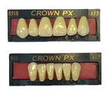Crown px anteriori - COLORE A4