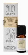 Camomilla Romana - 100% Puro