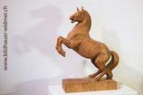 Pferd wilder Hengst, steigend
