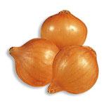 Cipolla bionda di Stoccarda da seme in bulbi