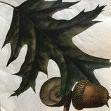 Acorns ペーパーナプキン