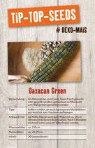 Saatgut Oaxacan Green